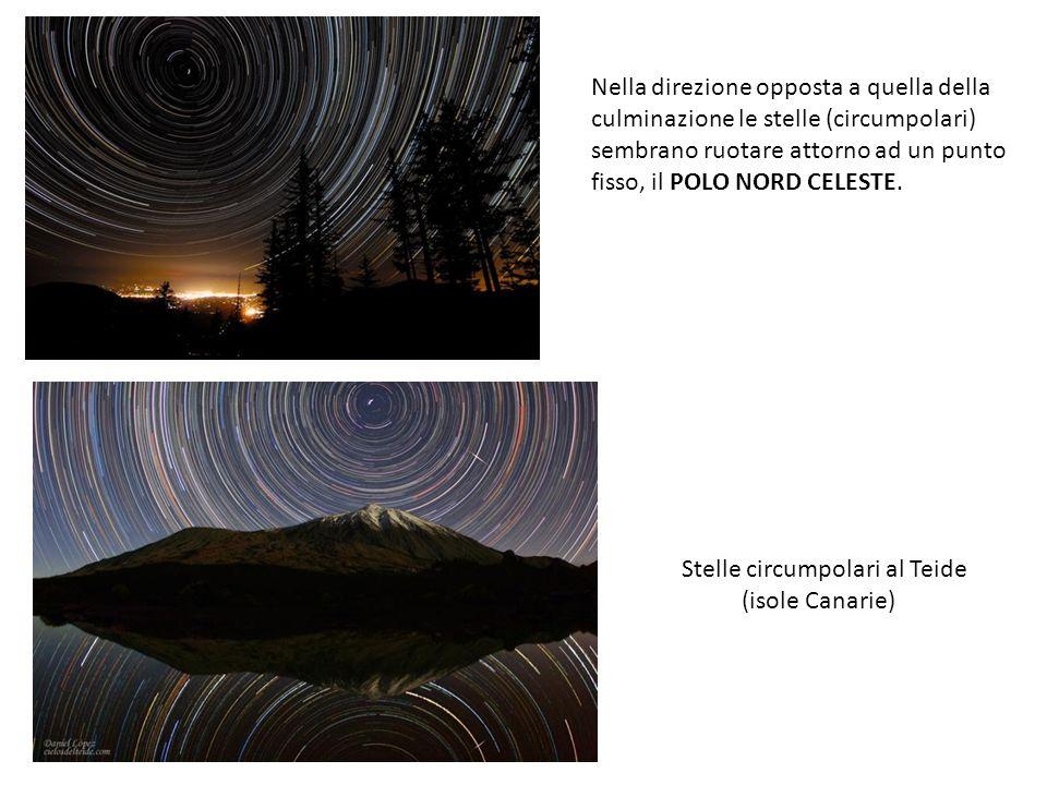 Nella direzione opposta a quella della culminazione le stelle (circumpolari) sembrano ruotare attorno ad un punto fisso, il POLO NORD CELESTE. Stelle
