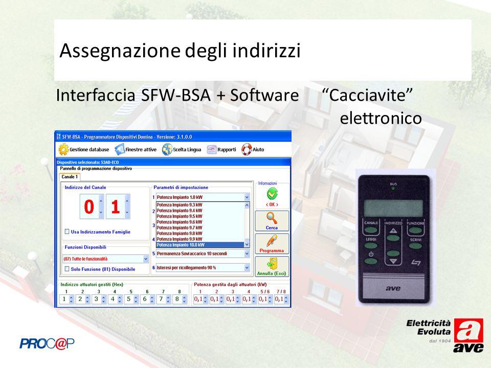 Assegnazione degli indirizzi Interfaccia SFW-BSA + SoftwareCacciavite elettronico