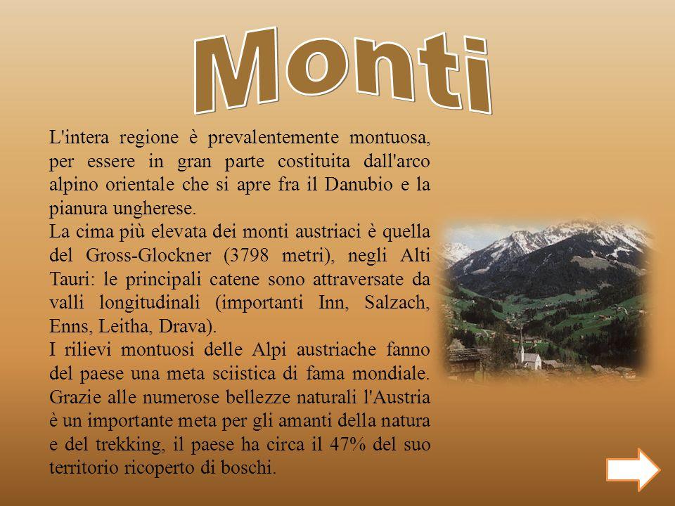 L'intera regione è prevalentemente montuosa, per essere in gran parte costituita dall'arco alpino orientale che si apre fra il Danubio e la pianura un