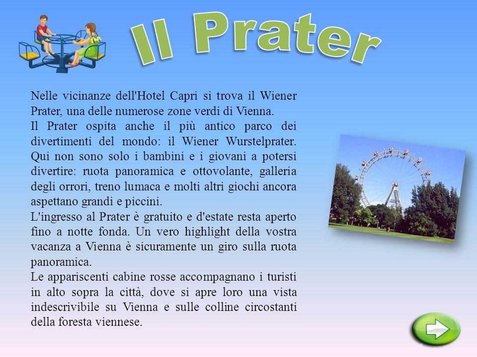 Nelle vicinanze dell'Hotel Capri si trova il Wiener Prater, una delle numerose zone verdi di Vienna. Il Prater ospita anche il più antico parco dei di