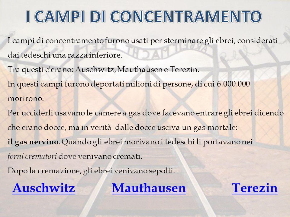 I campi di concentramento furono usati per sterminare gli ebrei, considerati dai tedeschi una razza inferiore. Tra questi c'erano: Auschwitz, Mauthaus
