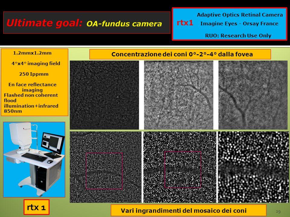 29 Adaptive Optics Retinal Camera rtx1 Imagine Eyes - Orsay France RUO: Research Use Only Concentrazione dei coni 0°-2°-4° dalla fovea Vari ingrandime