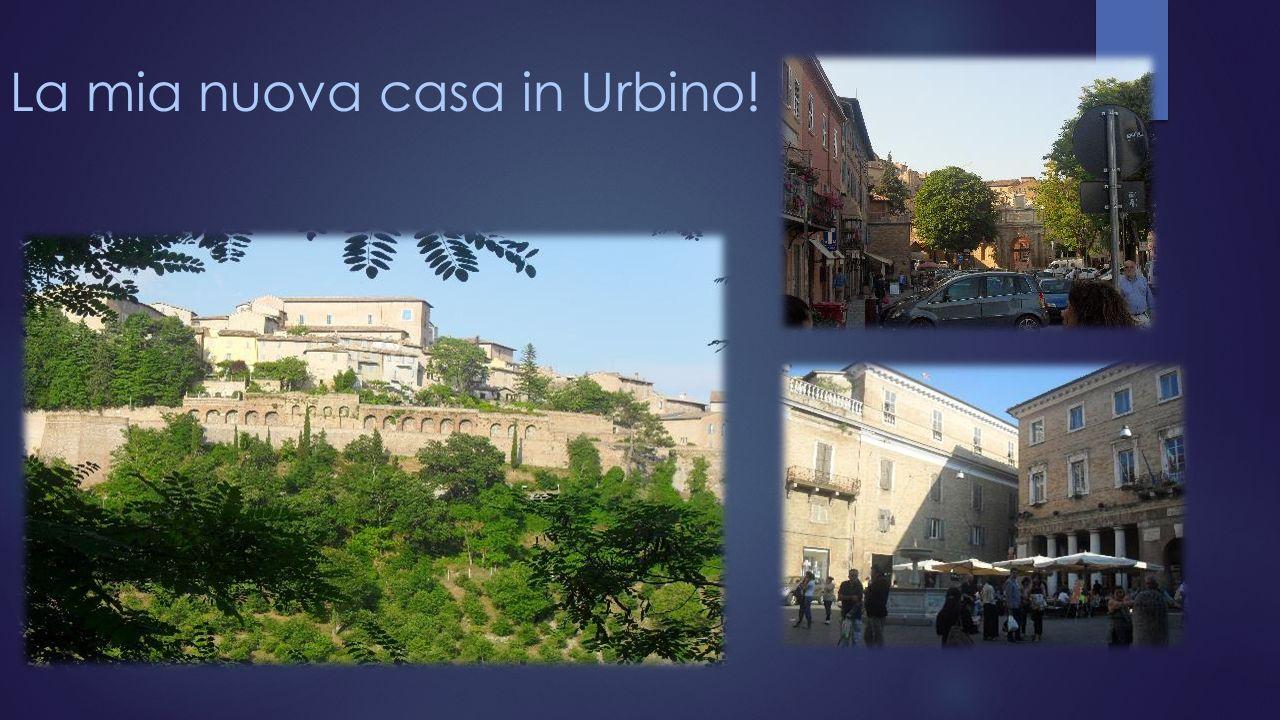 IL MIO VIAGGIO IN ITALIA STUDENTESSA: DIANA DAGUIAR