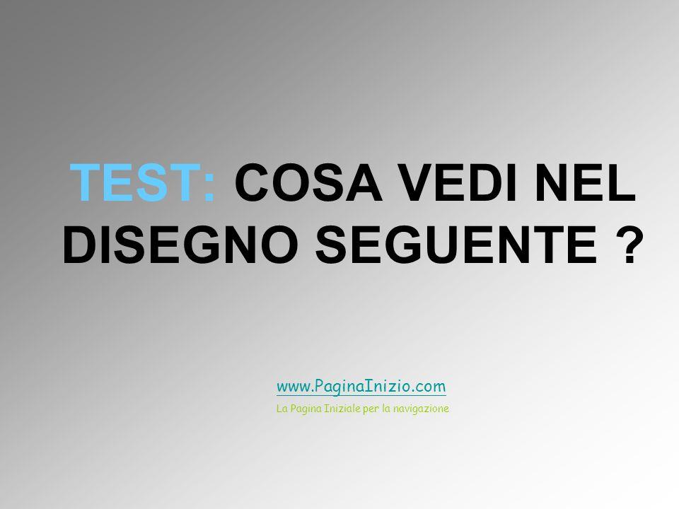 TEST: COSA VEDI NEL DISEGNO SEGUENTE ? www.PaginaInizio.com La Pagina Iniziale per la navigazione