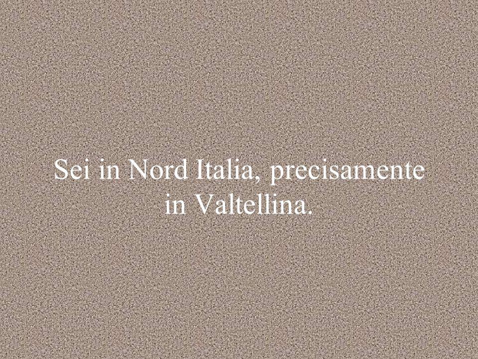 Sei in Nord Italia, precisamente in Valtellina.