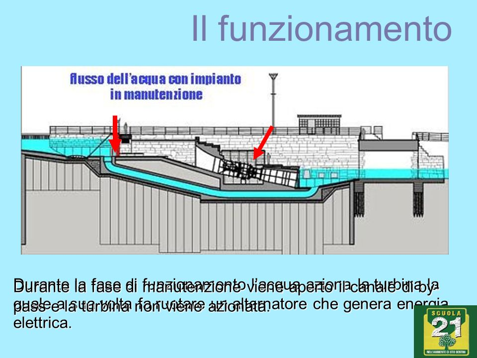 Il funzionamento Durante la fase di funzionamento lacqua aziona la turbina la quale a sua volta fa ruotare un alternatore che genera energia elettrica.