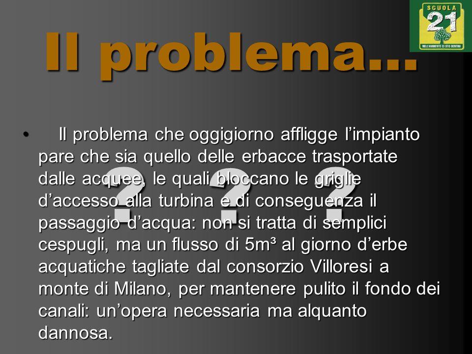 Il problema... ?? ? Il problema che oggigiorno affligge limpianto pare che sia quello delle erbacce trasportate dalle acquee, le quali bloccano le gri