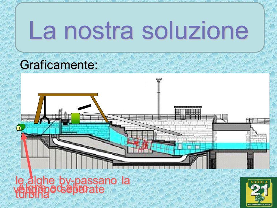 La nostra soluzione Graficamente: Alghe ed altro vengono separate le alghe by-passano la turbina