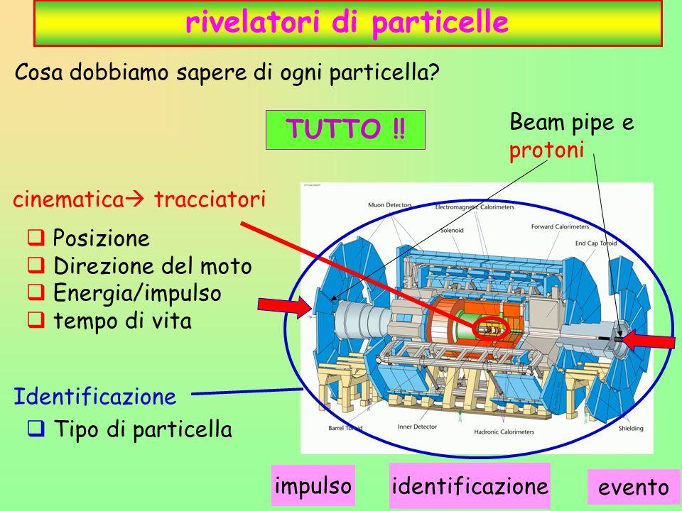 12 rivelatori di particelle Posizione Direzione del moto Energia/impulso tempo di vita Tipo di particella Cosa dobbiamo sapere di ogni particella.