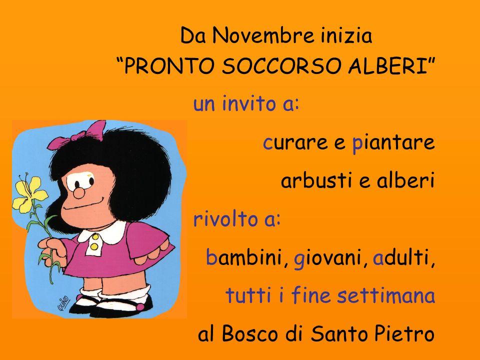 Da Novembre inizia PRONTO SOCCORSO ALBERI un invito a: curare e piantare arbusti e alberi rivolto a: bambini, giovani, adulti, tutti i fine settimana