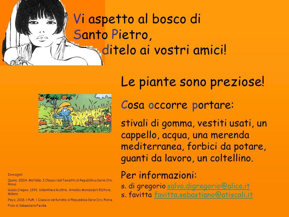 Vi aspetto al bosco di Santo Pietro, ditelo ai vostri amici! Le piante sono preziose! Immagini: Quino, 2004. Mafalda, I Classici del fumetto di Repubb