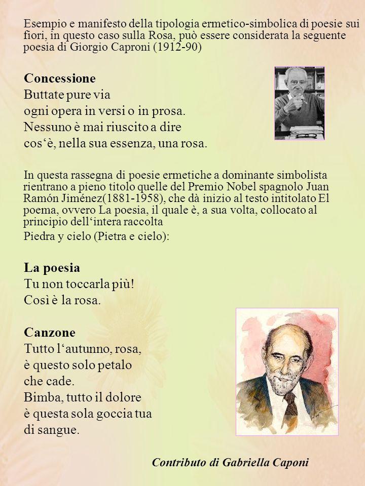 Esempio e manifesto della tipologia ermetico-simbolica di poesie sui fiori, in questo caso sulla Rosa, può essere considerata la seguente poesia di Giorgio Caproni (1912-90) Concessione Buttate pure via ogni opera in versi o in prosa.