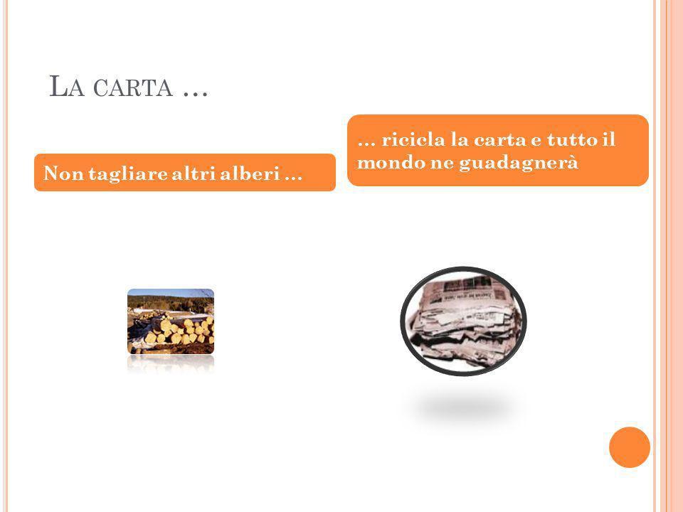 L A CARTA … Non tagliare altri alberi … … ricicla la carta e tutto il mondo ne guadagnerà