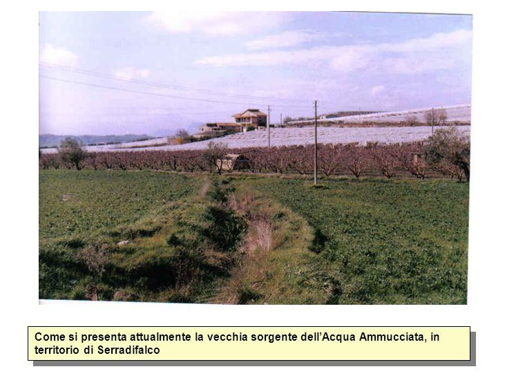Come si presenta attualmente la vecchia sorgente dellAcqua Ammucciata, in territorio di Serradifalco