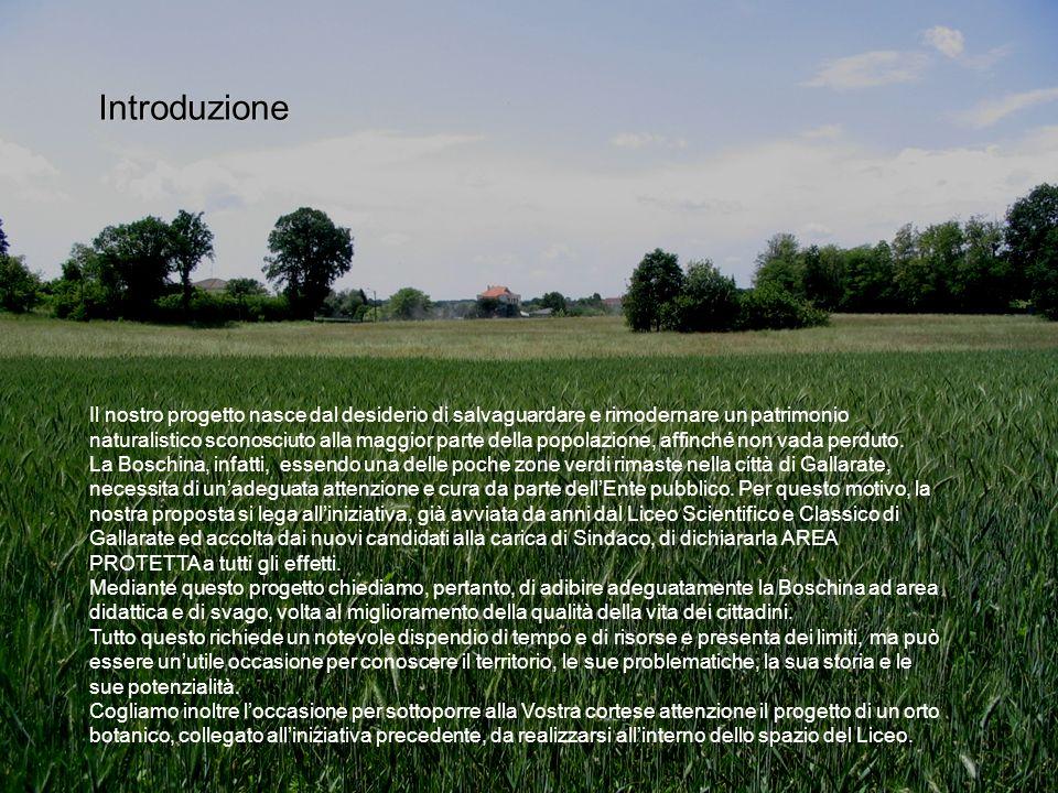 Introduzione Il nostro progetto nasce dal desiderio di salvaguardare e rimodernare un patrimonio naturalistico sconosciuto alla maggior parte della po