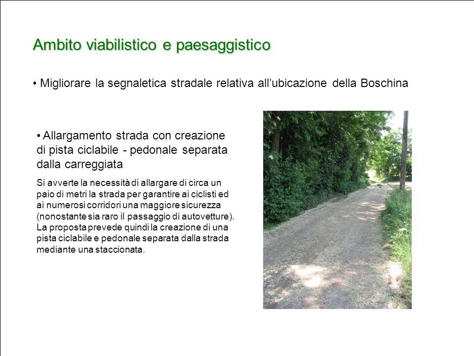 Ambito viabilistico e paesaggistico Allargamento strada con creazione di pista ciclabile - pedonale separata dalla carreggiata Si avverte la necessità