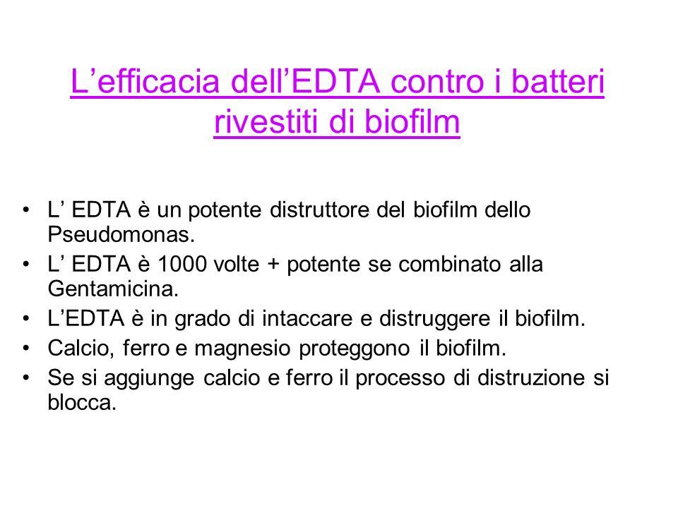 Lefficacia dellEDTA contro i batteri rivestiti di biofilm L EDTA è un potente distruttore del biofilm dello Pseudomonas.
