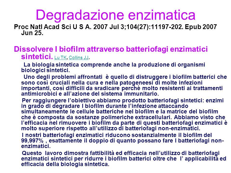 Degradazione enzimatica Proc Natl Acad Sci U S A.2007 Jul 3;104(27):11197-202.