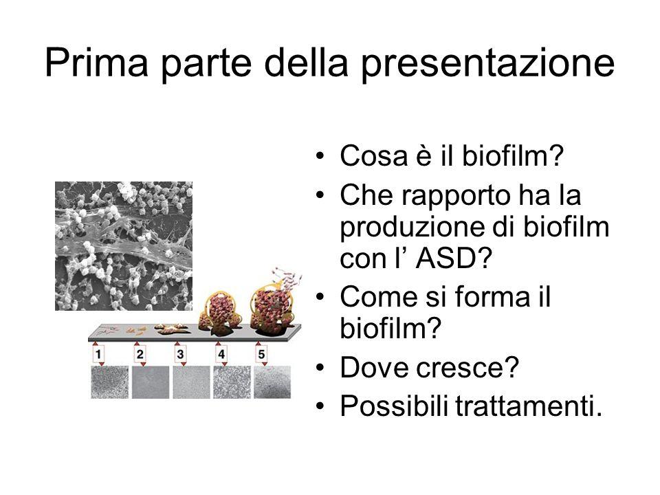 Distruzione dei biofilm da parte del sistema immunitario Nature.