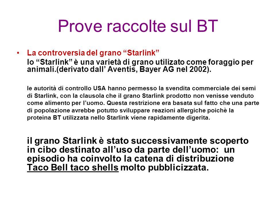 Prove raccolte sul BT La controversia del grano Starlink lo Starlink è una varietà di grano utilizato come foraggio per animali.(derivato dall Aventis, Bayer AG nel 2002).