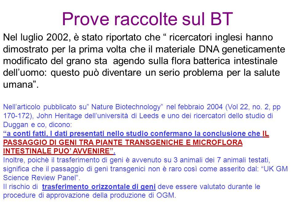 Prove raccolte sul BT Nellarticolo pubblicato su Nature Biotechnology nel febbraio 2004 (Vol 22, no.