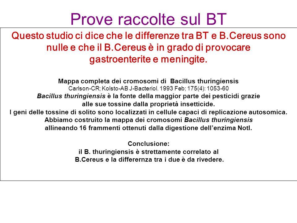 Prove raccolte sul BT Questo studio ci dice che le differenze tra BT e B.Cereus sono nulle e che il B.Cereus è in grado di provocare gastroenterite e meningite.