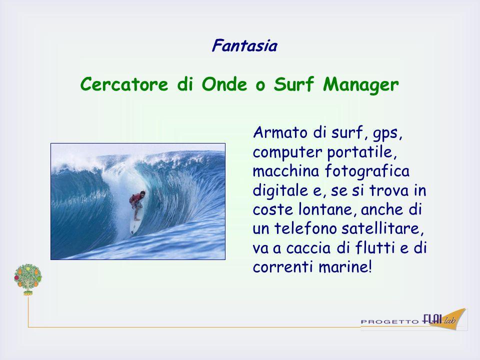 Fantasia Armato di surf, gps, computer portatile, macchina fotografica digitale e, se si trova in coste lontane, anche di un telefono satellitare, va