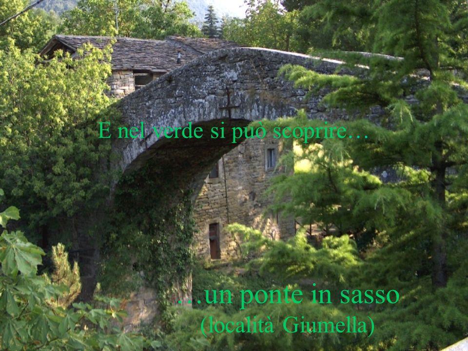 E nel verde si può scoprire… …un ponte in sasso (località Giumella)