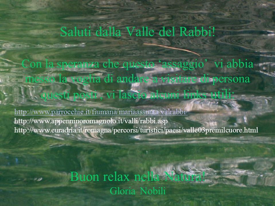 Saluti dalla Valle del Rabbi! Con la speranza che questo assaggio vi abbia messo la voglia di andare a visitare di persona questi posti, vi lascio alc