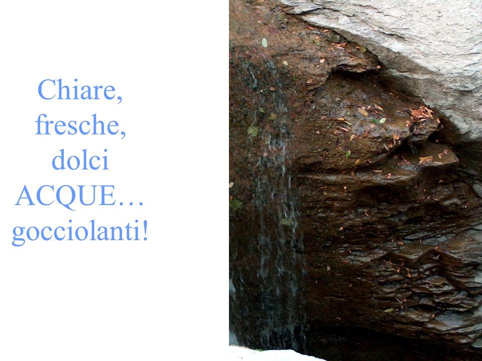 …e ortensie … Gli originali li trovate vicino al mulino Mengozzi (località Fiumicello)