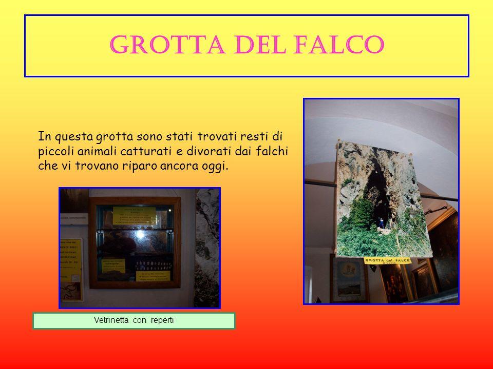 Grotta del falco In questa grotta sono stati trovati resti di piccoli animali catturati e divorati dai falchi che vi trovano riparo ancora oggi.