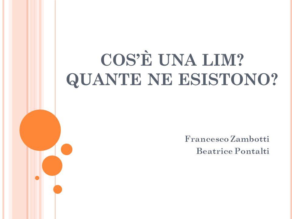 COSÈ UNA LIM? QUANTE NE ESISTONO? Francesco Zambotti Beatrice Pontalti
