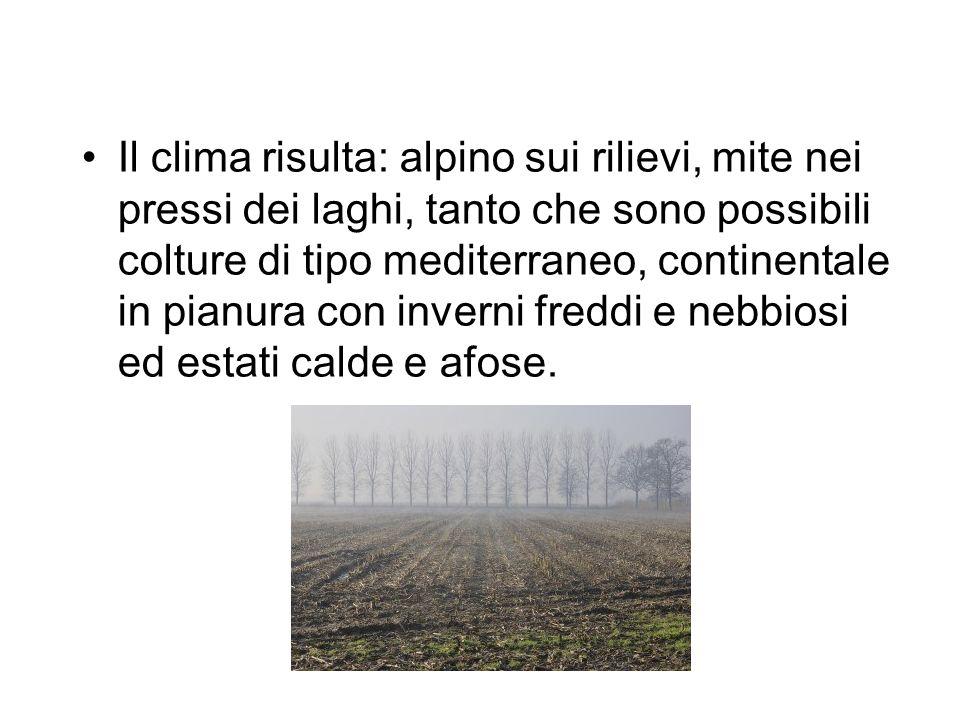 Il clima risulta: alpino sui rilievi, mite nei pressi dei laghi, tanto che sono possibili colture di tipo mediterraneo, continentale in pianura con in