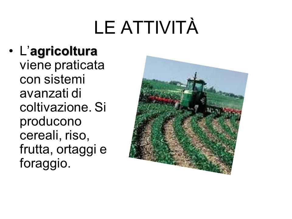 LE ATTIVITÀ agricolturaLagricoltura viene praticata con sistemi avanzati di coltivazione. Si producono cereali, riso, frutta, ortaggi e foraggio.