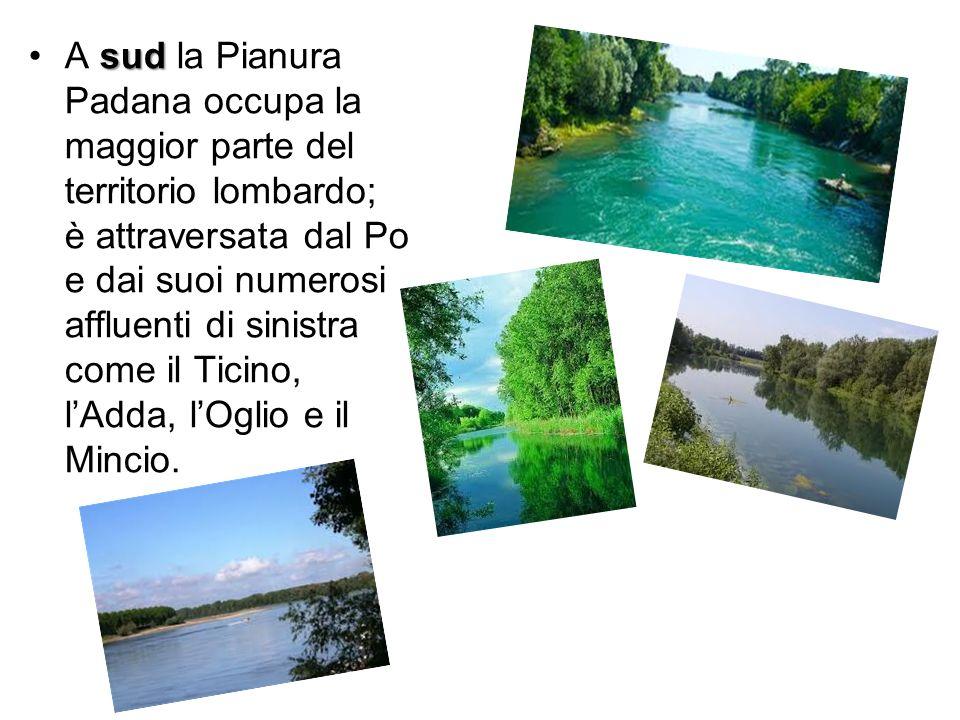 sudA sud la Pianura Padana occupa la maggior parte del territorio lombardo; è attraversata dal Po e dai suoi numerosi affluenti di sinistra come il Ti