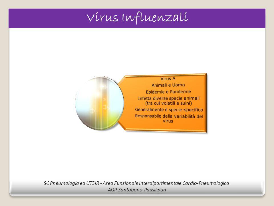 Virus Influenzali SC Pneumologia ed UTSIR - Area Funzionale Interdipartimentale Cardio-Pneumologica AOP Santobono-Pausilipon SC Pneumologia ed UTSIR -