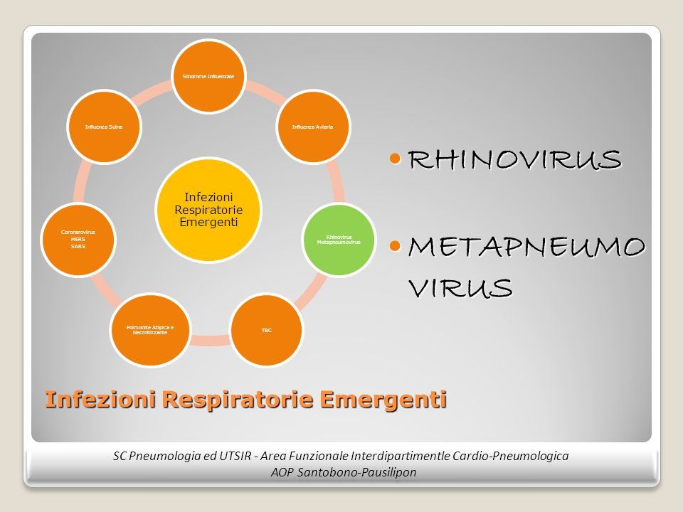 Infezioni Respiratorie Emergenti RHINOVIRUS RHINOVIRUS METAPNEUMO VIRUS METAPNEUMO VIRUS SC Pneumologia ed UTSIR - Area Funzionale Interdipartimentle