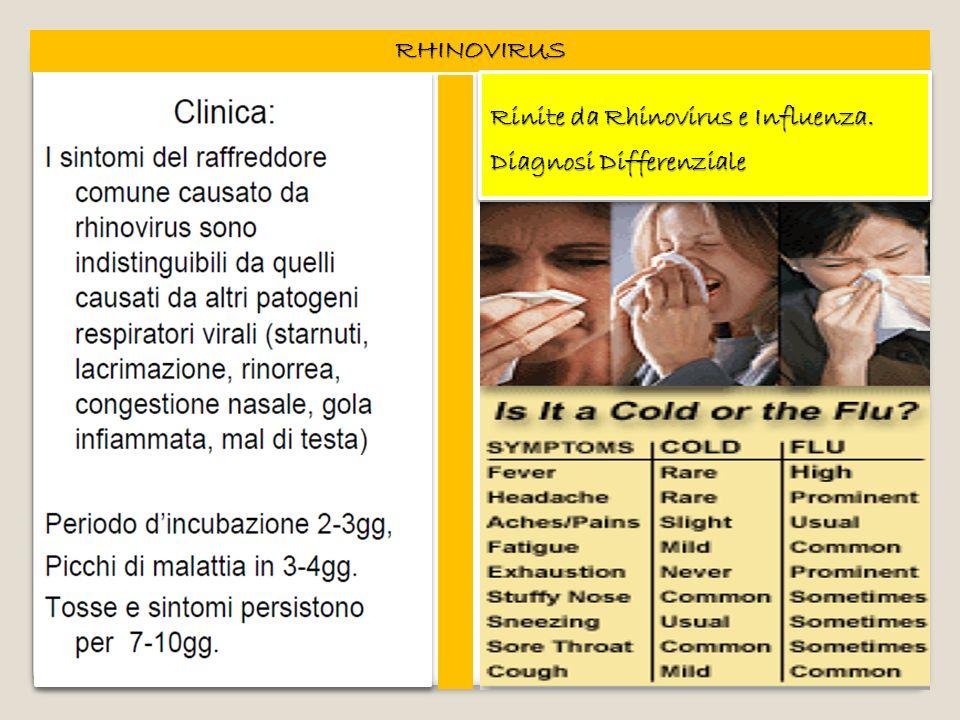 RHINOVIRUS Rinite da Rhinovirus e Influenza. Diagnosi Differenziale Rinite da Rhinovirus e Influenza. Diagnosi Differenziale