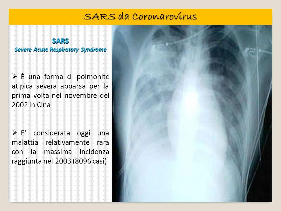 SARS da Coronarovirus SARS Severe Acute Respiratory Syndrome È una forma di polmonite atipica severa apparsa per la prima volta nel novembre del 2002