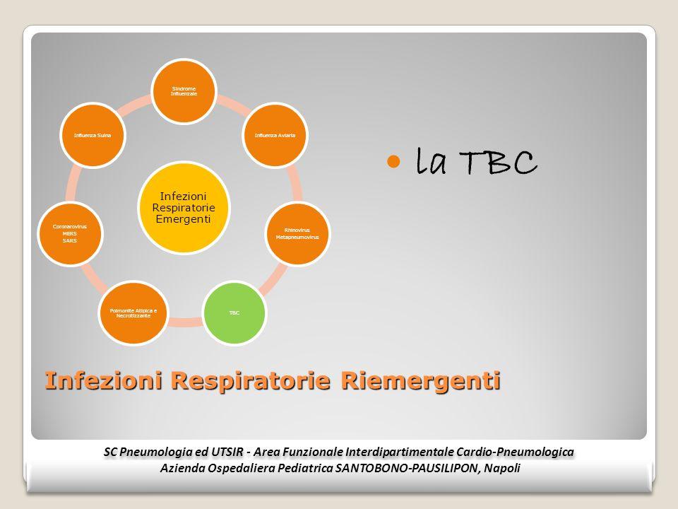 Infezioni Respiratorie Riemergenti la TBC SC Pneumologia ed UTSIR - Area Funzionale Interdipartimentale Cardio-Pneumologica Azienda Ospedaliera Pediat