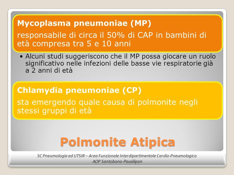 Polmonite Atipica Mycoplasma pneumoniae (MP) responsabile di circa il 50% di CAP in bambini di età compresa tra 5 e 10 anni Alcuni studi suggeriscono