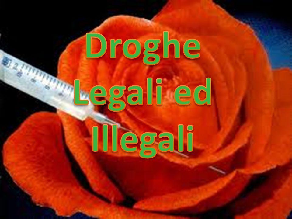 Esistono droghe che la legge proibisce di consumare e di smerciare e altre che possono liberamente essere acquistate ed assunte.