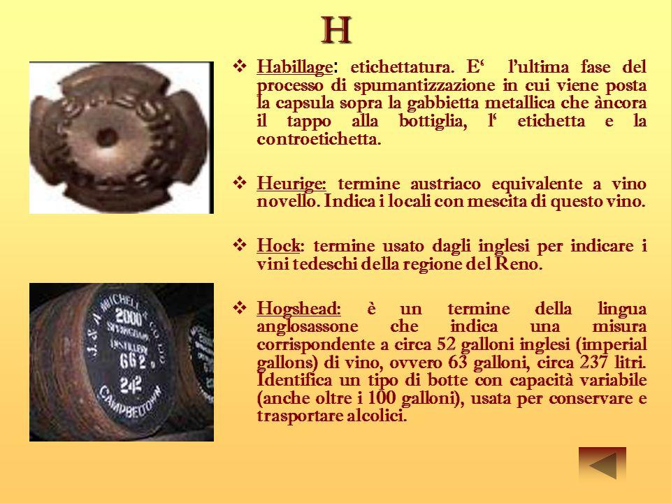 H Habillage : etichettatura. E lultima fase del processo di spumantizzazione in cui viene posta la capsula sopra la gabbietta metallica che àncora il