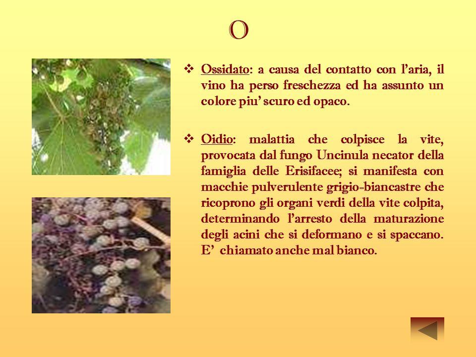 O Ossidato: a causa del contatto con laria, il vino ha perso freschezza ed ha assunto un colore piu scuro ed opaco. Oidio: malattia che colpisce la vi