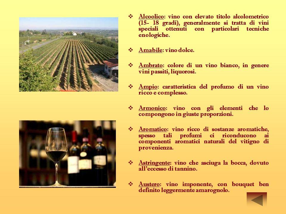 I Ibrido: in viticoltura rappresenta una vite ottenuta dallunione di specie diverse, per via spontanea (ibrido naturale) o per opera dell uomo (ibrido artificiale).