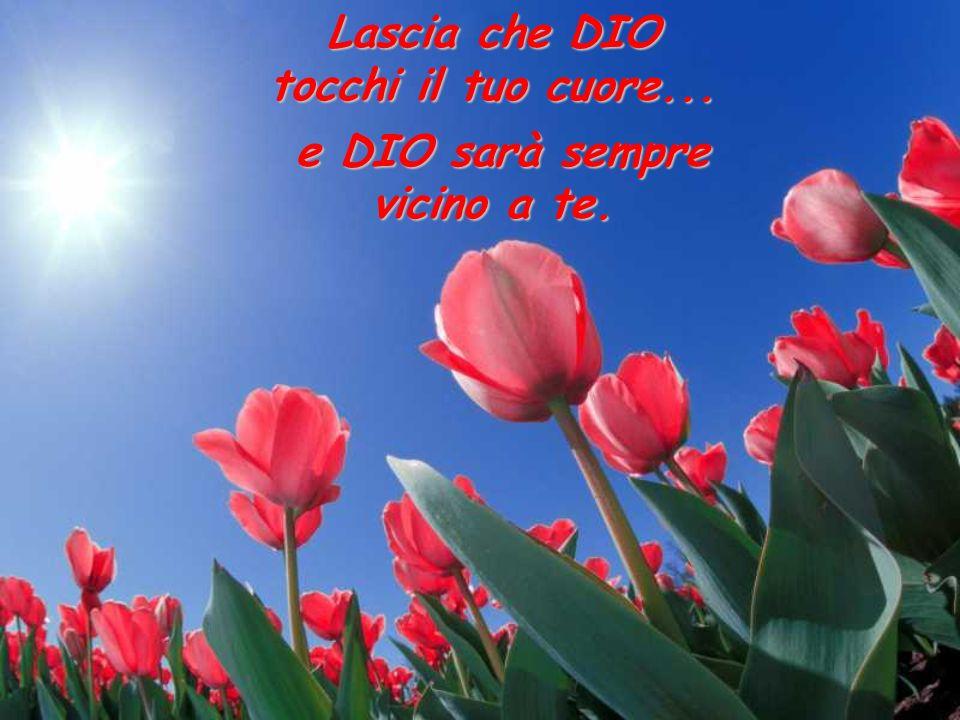 Tutto acquista una luce nuova SE METTI DIO DAVANTI A TUTTO!!!