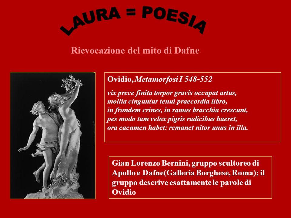 Rievocazione del mito di Dafne Ovidio, Metamorfosi I 548-552 vix prece finita torpor gravis occupat artus, mollia cinguntur tenui praecordia libro, in