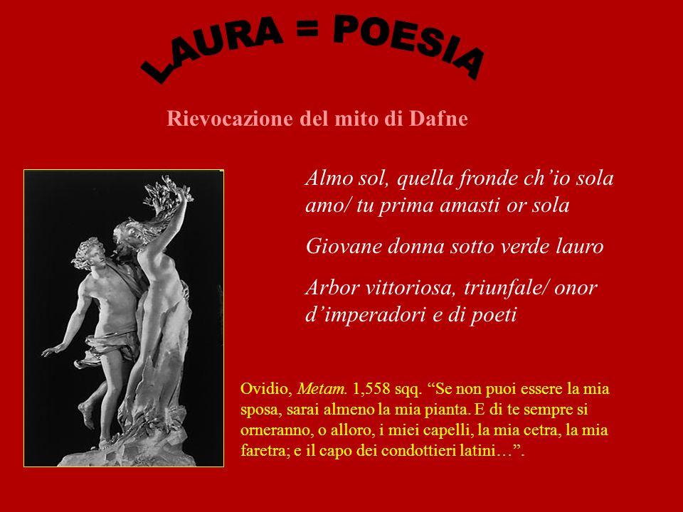 Rievocazione del mito di Dafne Almo sol, quella fronde chio sola amo/ tu prima amasti or sola Giovane donna sotto verde lauro Arbor vittoriosa, triunfale/ onor dimperadori e di poeti Ovidio, Metam.
