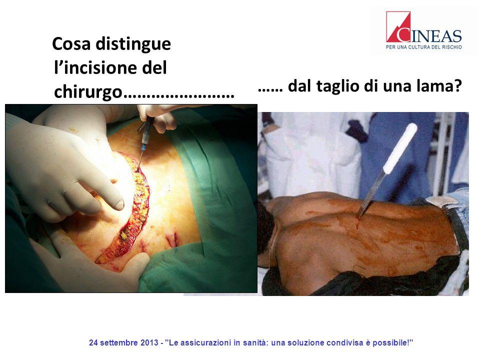 24 settembre 2013 - Le assicurazioni in sanità: una soluzione condivisa è possibile! …… dal taglio di una lama.