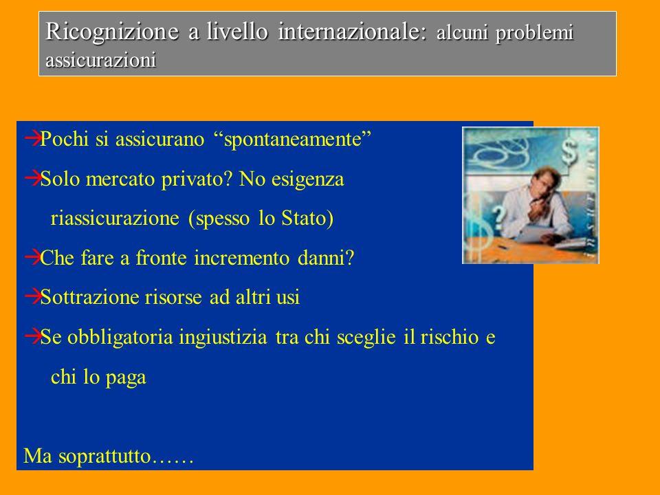 Ricognizione a livello internazionale: alcuni problemi assicurazioni Pochi si assicurano spontaneamente Solo mercato privato? No esigenza riassicurazi